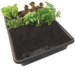 Multi-Purpose Garden Tray