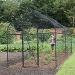 Ogee Arch Fruit and Vegetable Cage