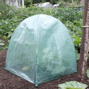Pop-Up Grow Cloches from Cold Frames, Cloches & Rhubarb