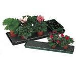 Self Watering Trays