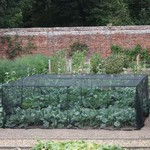 Slot & Lock Vegetable Cage (1.2m H)