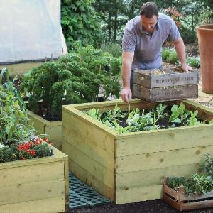 Standard Wooden Raised Beds From Raised Bed Kits Wooden