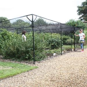 Steel Fruit And Vegetable Cages Fruit And Vegetable