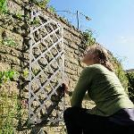 Superior Wall Trellis Panel