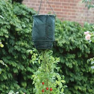 Upside Down Hanging Tomato Strawberry Planter From Patio