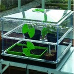 Variable Temperature Propagators