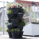 Wall & Vertical Planters