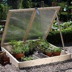 Wooden Cold Frames