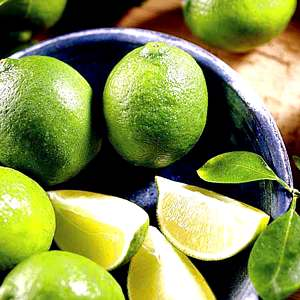 Lime Citrus Tree