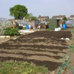 Allotment History - The First Allotments by Dr Lesley Acton MA Ph.D