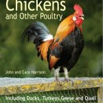 Backgarden Chickens & Other Poultry