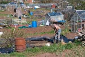 Finding Allotment
