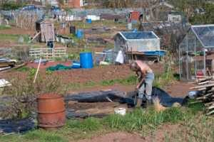 About Allotments
