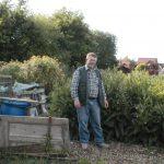 Growing & Using Comfrey for Gardeners