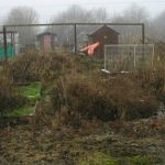 Clearing a New Allotment or Vegetable Plot