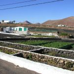 Spanish Versus British Allotments - Allotments in Spain