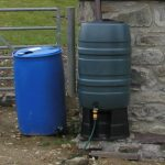 Controlling Insects & Mosquitoes in Water Butts