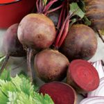 Growing Beetroot - How to Grow Beetroot