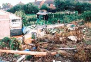 Another Derelict Allotment