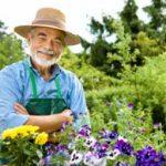 Garden Hints & Tips