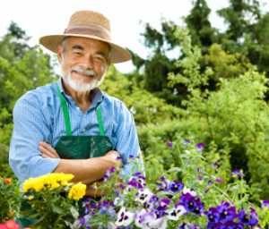 Garden Hints & Tip