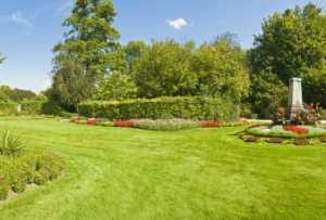 Renovating a Lawn Restoring an Old or Damaged Lawn