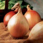Growing Onions - How to Grow Onions