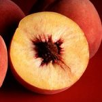 Growing Peaches and Nectarines - How to Grow Peaches