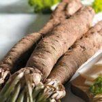 Growing Scorzonera - How to Grow Scorconera