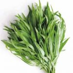 Growing Tarragon - How to Grow Tarragon
