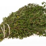 Growing Thyme - How to Grow Thyme