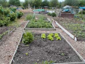 Wood Chippings Allotment Paths