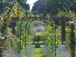 Decorative Garden Arches