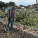Planning the Allotment Crop Rotation Plan - What Potatoes to Grow