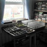 Start Your Seeds Indoors For A Jump On Spring Planting