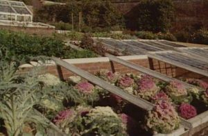 Traditional Brick Coldframe