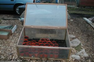 Wood Polycarbonate Coldframe