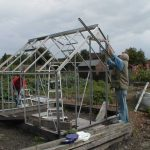 Second Hand Greenhouse - Buying, Dismantling and Re-building a Greenhouse