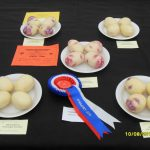 Growing Potatoes for Show, Introduction & Best Varieties