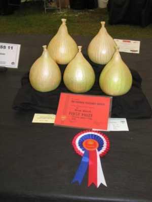 Show Winning Kelsae Onions.