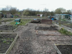 View Down the New Allotment Plot