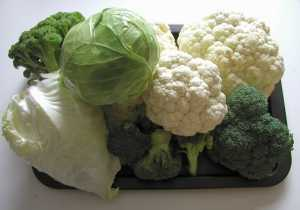 Grow Your Own - Brassica Collection