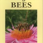 Starting With Bees by Peter Gordon