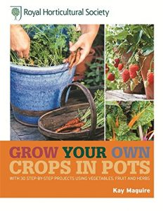 Crops in Pots by Kay Maguire