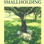 Starting with a Smallholding by David Hills