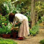 General Gardening Books