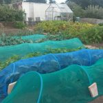 Grow Your Own Competition - Exmouth