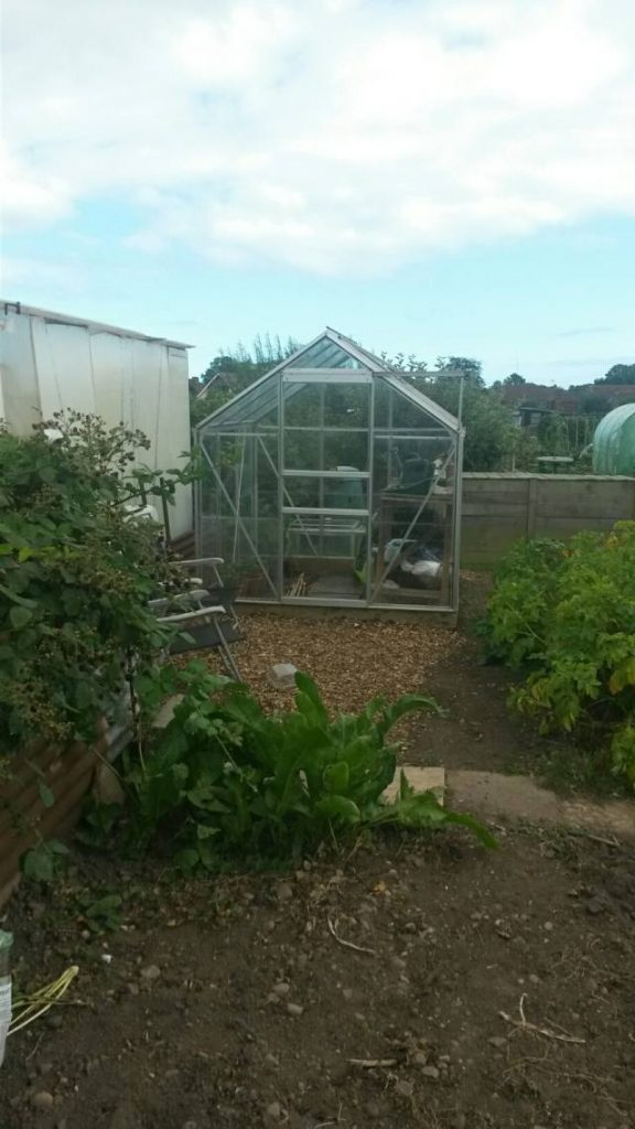 Greenhouse on Allotment