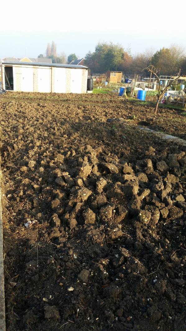 Allotment After