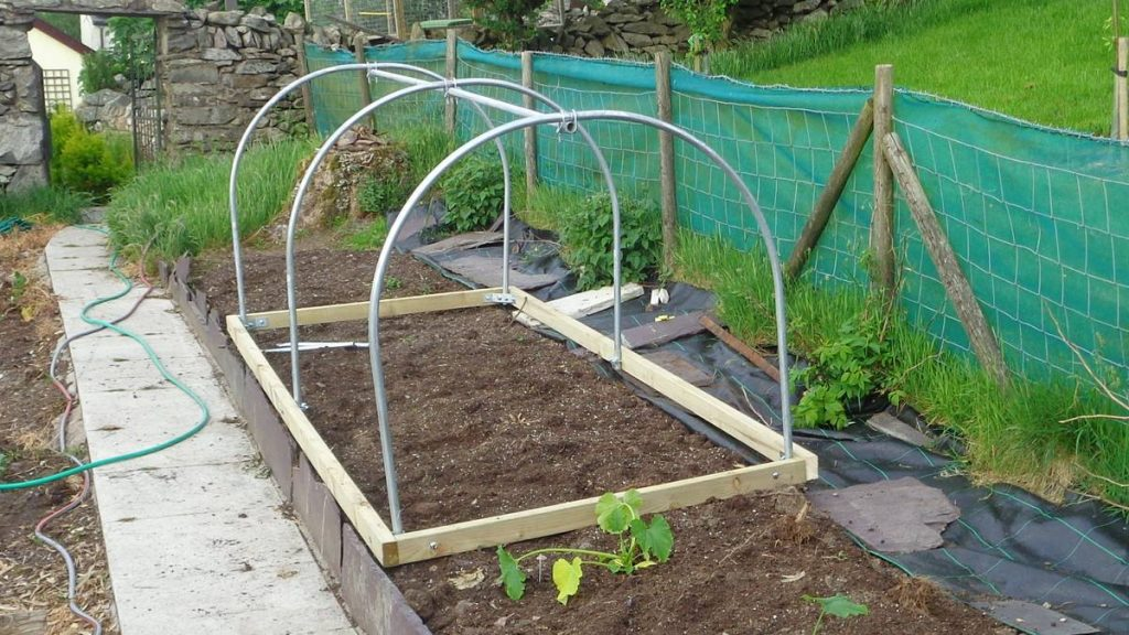 Mini Polytunnel Ready for Cover